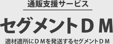 セグメントDM